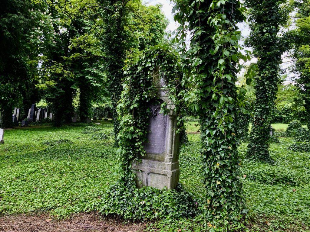 masz uwage - cmentarz żydowski w Bielsku-Białej