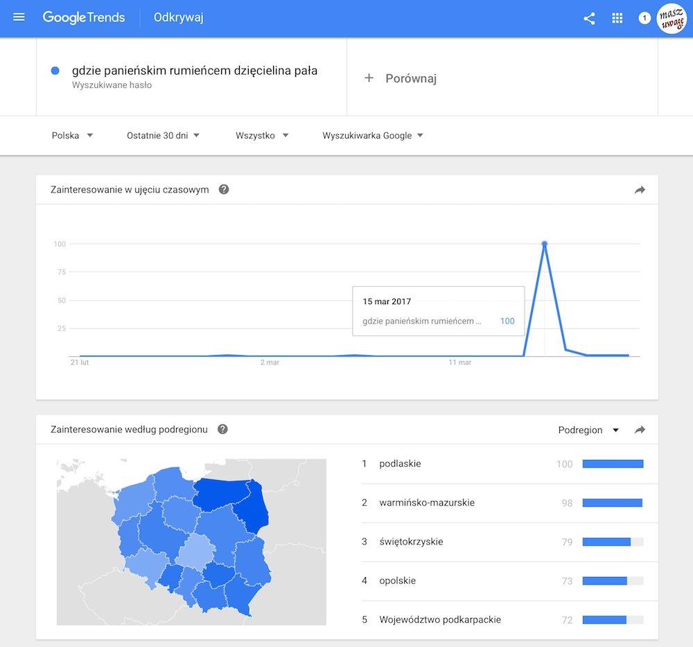 dziecielina pala - google trends